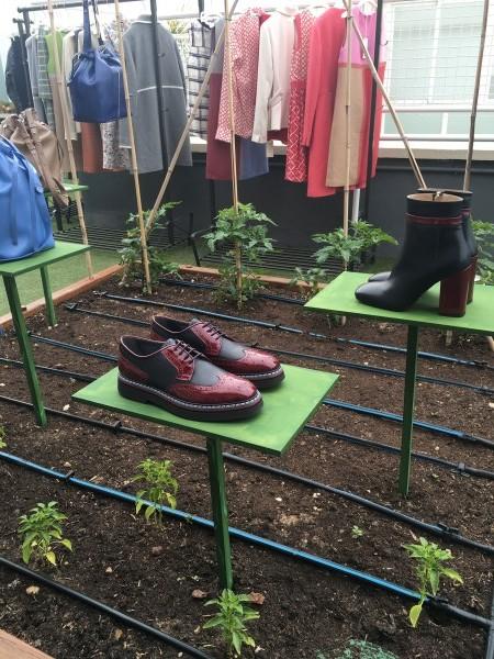 Presentación colección Harmont & Blaine otoño - invierno 2016 - 2017