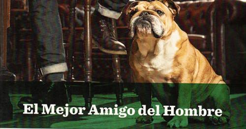 Imagen-de-la-línea-de-cosmética-Bulldog