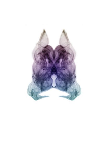 Sensfox-nuevo-personaje-de-SmokeAliens