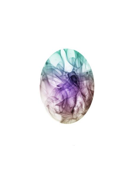 El-huevo-de-Sensfox