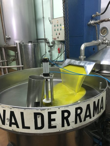 primer-zumo-resultante-de-la-extraccion-de-las-aceitunas